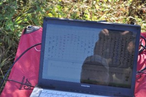 laptop in field